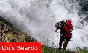 Lluis-beardo